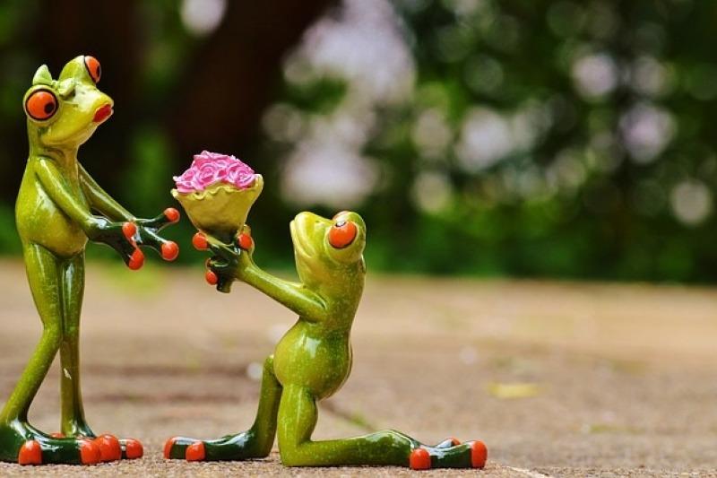L'organizzazione del matrimonio: ecco qualche consiglio per non rovinare questo momento così special