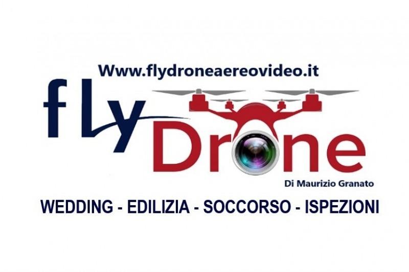 FlyDrone