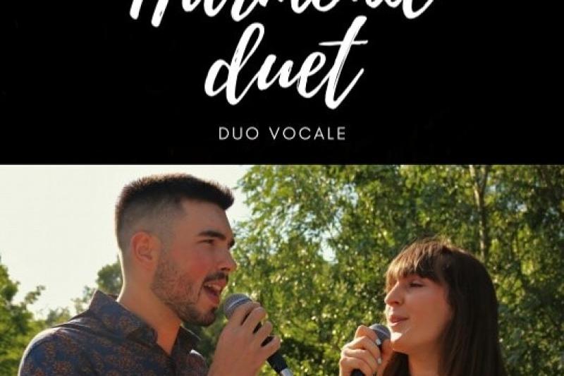 HarmonicDuet