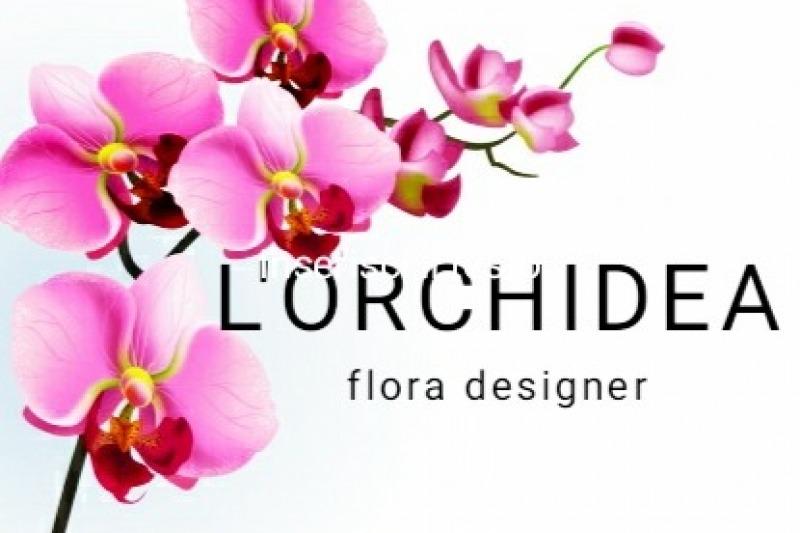 L'Orchidea sas