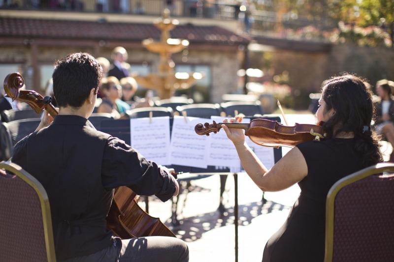 Violinista Cremona